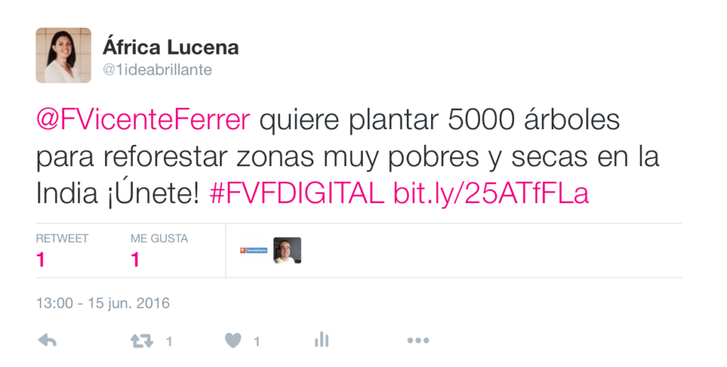 voluntario digital fvf